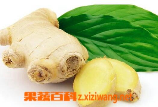 果蔬百科生姜怎么吃减肥